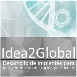 Idea2Global de FIPSE y MIT